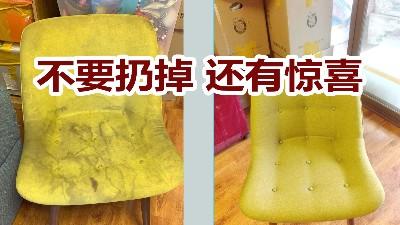 沙发清洗服务,网友:我真的服了!